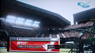 Stadium atmosphere is realistic.